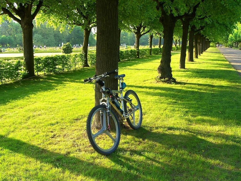 Hausratversicherung-Berlin-Fahrraddiebstahl-in-der-Hausratversicherung-Verbrauchertipps-Versicherungsmakler-Berlin